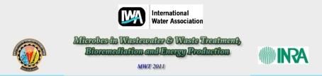 MWT 2011 Banner